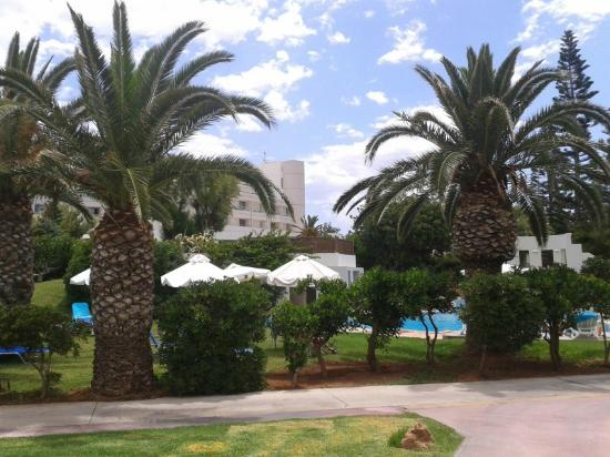 Agapi Beach Hotel: Garden