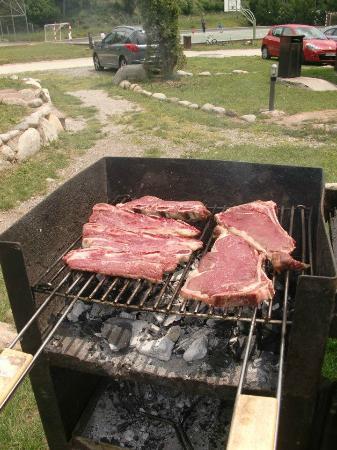Camping Vall De Camprodon: barbacoa