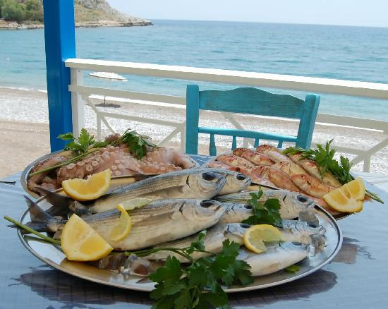 Fresh fish and seafood picture of kapetanios seafood for Fish and seafood