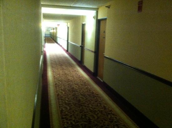 Best Western Naperville Inn: hallway