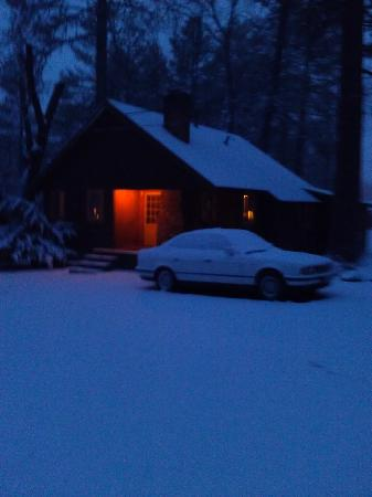 Idyllwild Inn: A lovely, quiet night... Cabin 23.