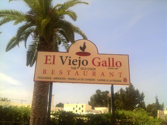 El Viejo Gallo : il ristorante