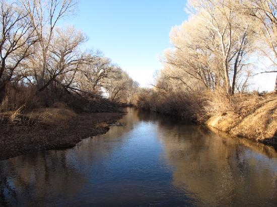 Lazy Dog Ranch: The San Pedro River