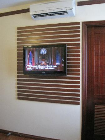 Asian Ruby Park View Hotel: Tv