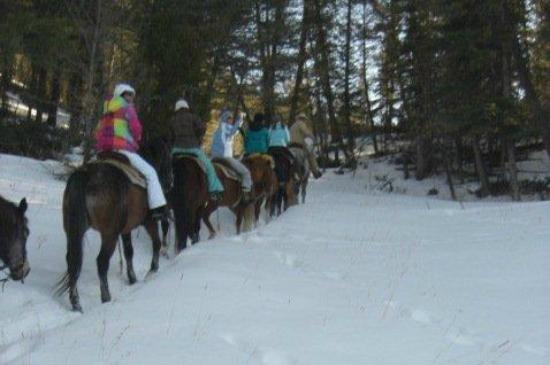 Jake's Horses: Girls trip ride with Russ