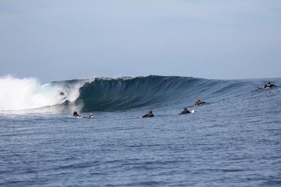 Taharuu Surf Lodge: 10