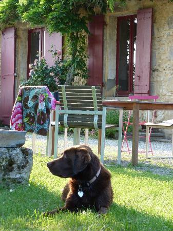 Domaine De Bellevue Cottage: Espace Extérieur