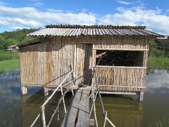 Batu Ritung Lodge: Bead hut