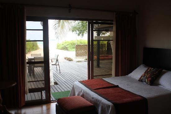 Red Mangrove Isabela Lodge: View from the Scalesia Room to the sea.