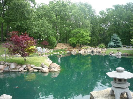 Coy Pond - Picture of Dubuque Arboretum and Botanical Gardens ...