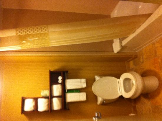Hampton Inn & Suites Exmore - Eastern Shore: Bathroom