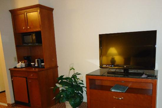 Hilton Garden Inn Denver Airport: Flat Screen TV