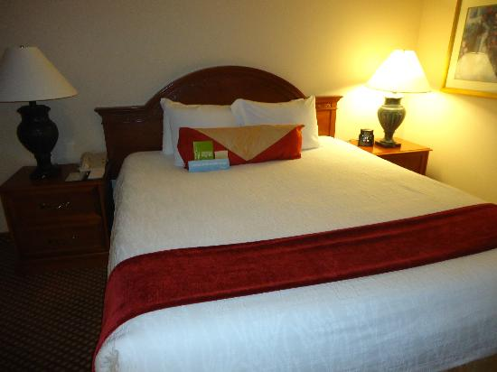 Hilton Garden Inn Denver Airport: King size bed