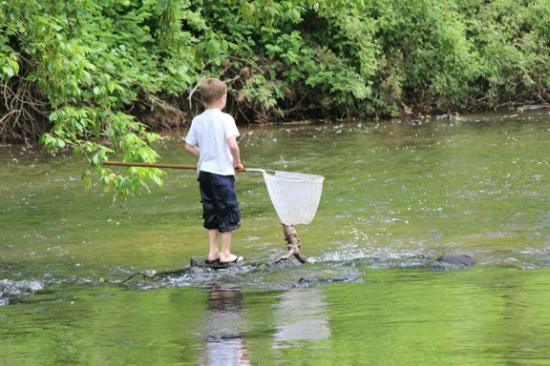 Gettysburg Campground: Stream runs along campground -- some sites are streamside.