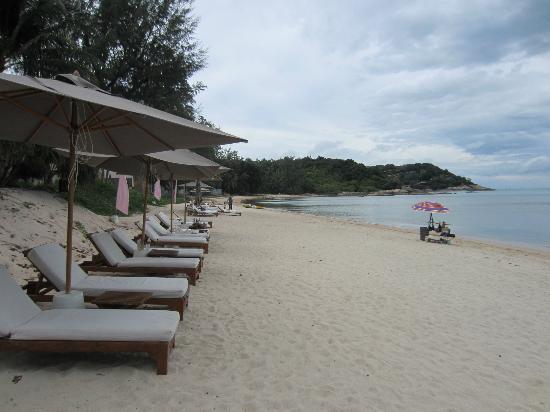 SALA Samui Resort And Spa: playa