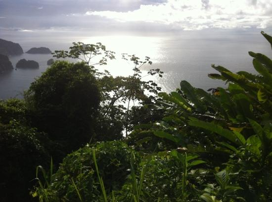 Maracas Bay: overlooking the bay