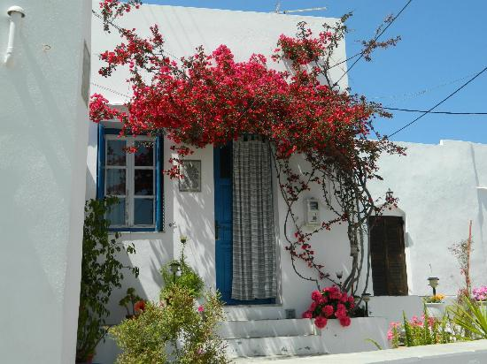 Sifnaika Konakia Traditional Settlements: Greek Flowers