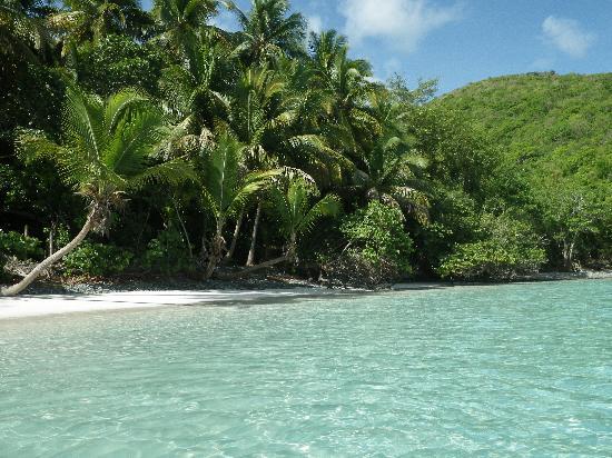 Maho Bay: Could be a postcard!