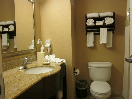 Hampton Inn Indiana : Bathroom