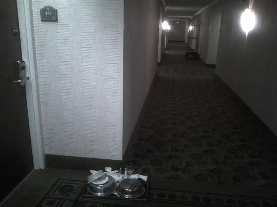 Hilton Knoxville Airport: Hallway