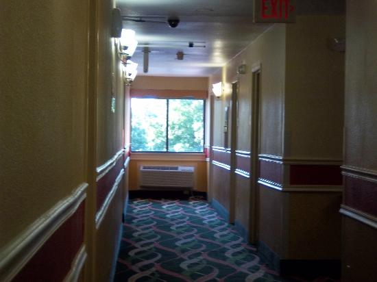 Super 8 Nashville Airport Music City Area: Hallway facing north