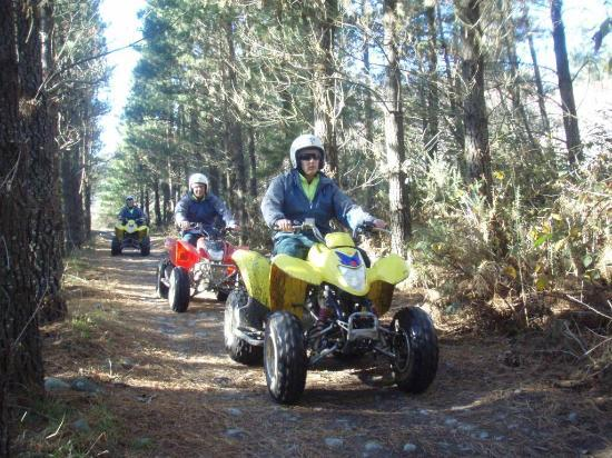 Hanmer Springs Attractions: Riding through pine forest trail