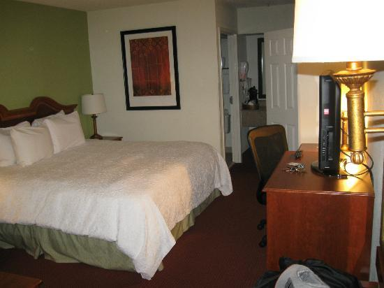 Hampton Inn Walterboro: ROOM