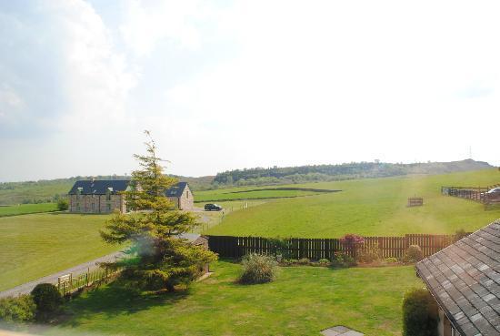 Tambowie Farm: Vistas desde la habitación