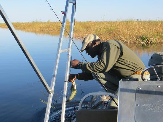 Selinda Camp: fishing with our guide Dux