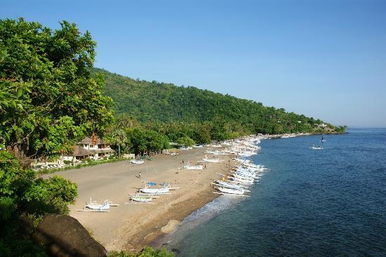 Palm Garden Amed Beach & Spa Resort : Das Hotel ist das Einzige in der ganzen Bucht