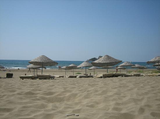 Iztuzu Beach : Turtle beach