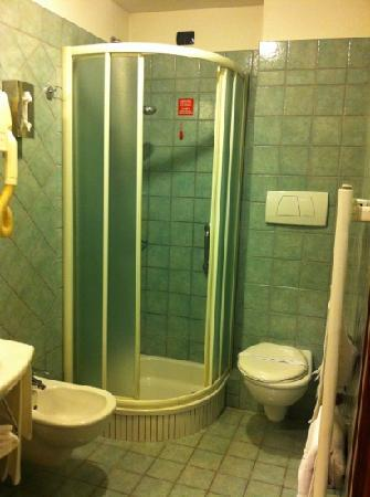 Hotel River: Good sized toilet with shower.
