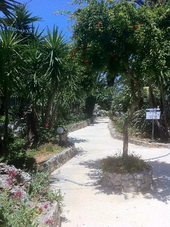 Sandy Beach Hotel: Pathways