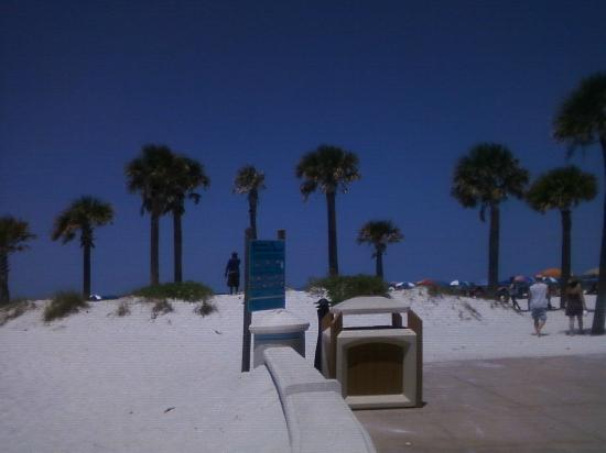 Super 8 Clearwater/St. Petersburg Airport: Clearwater Beach: another hot day