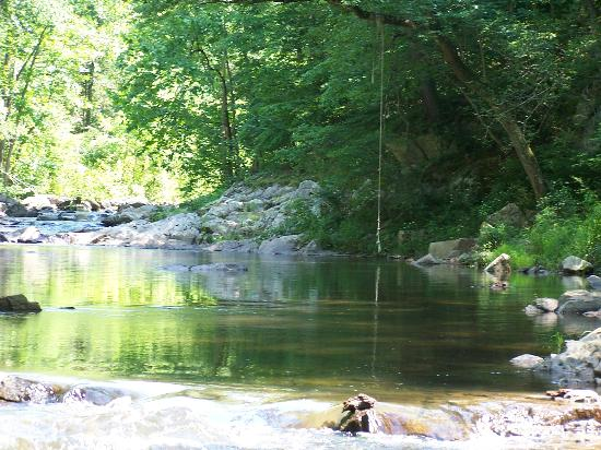Gooney Creek Campground: Wonderful Swimming Hole!