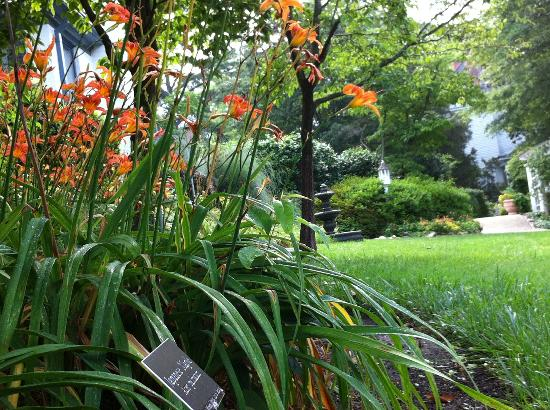 Fuquay Mineral Spring Inn and Garden : A side garden view. Notice the plant sign under the lillies?