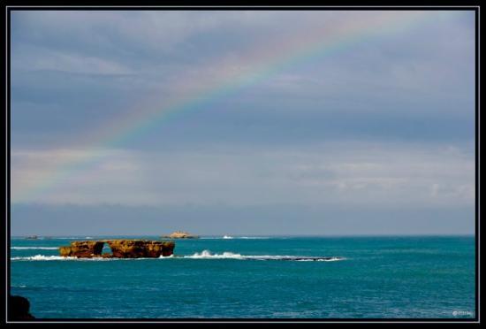 Best Western Melaleuca Motel: Rainbow