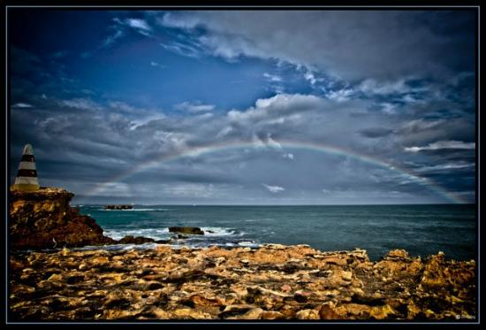 بست وسترن ميلاليوكا موتيل: Rainbow