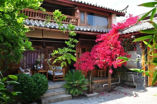 Sal's Paradise Inn : courtyard