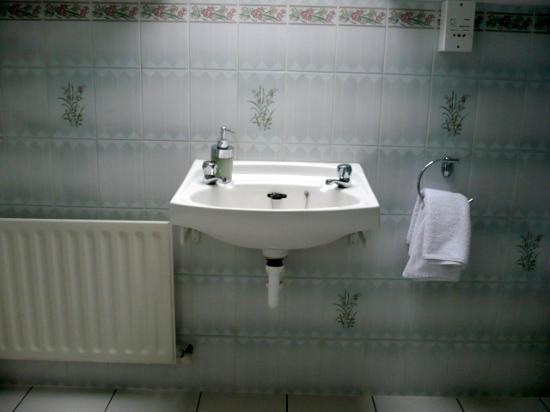 Abbeyville Bed & Breakfast: lavandino con rubinetti separati