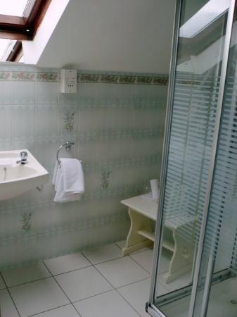Abbeyville Bed & Breakfast: una bella doccia