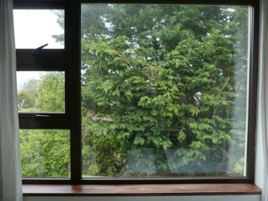 Abbeyville Bed & Breakfast: la grande vetrata in camera