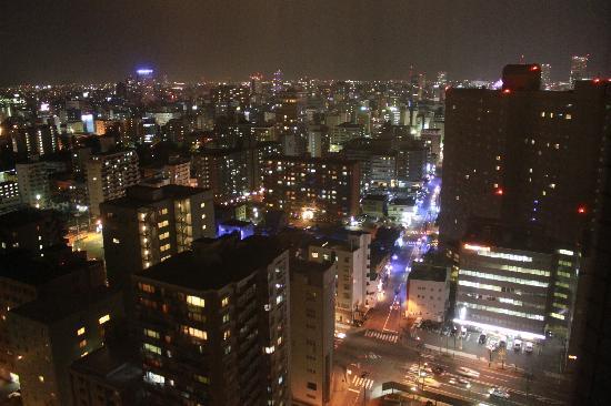 Premier Hotel Nakajima Park Sapporo: 部屋からの夜景