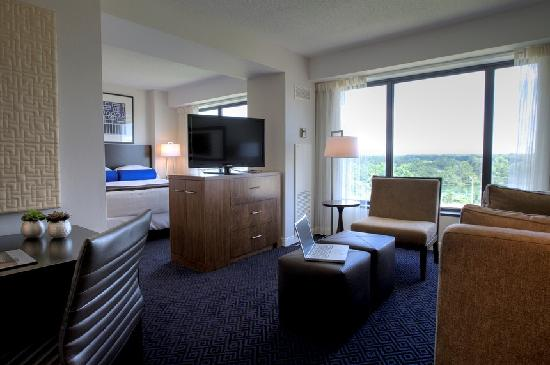 Hyatt Regency Lisle near Naperville : Try our Panoramic Room - Fully Renovated!