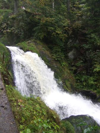 Triberger Waterfall: Triberg. Waterfall.