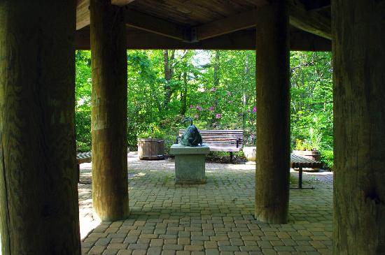 Helen Avalynne Tawes Garden: Tons of shade!