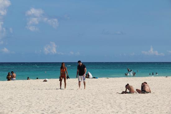 Hotel Posada Sian Ka'an: Playa
