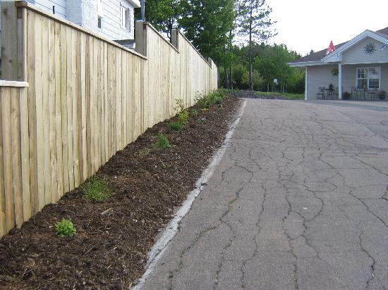 Antigonish Evergreen Inn: Our new fence is a showcase to a new flower bed