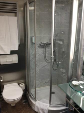 Best Western Hotel Regence: shower & toilet