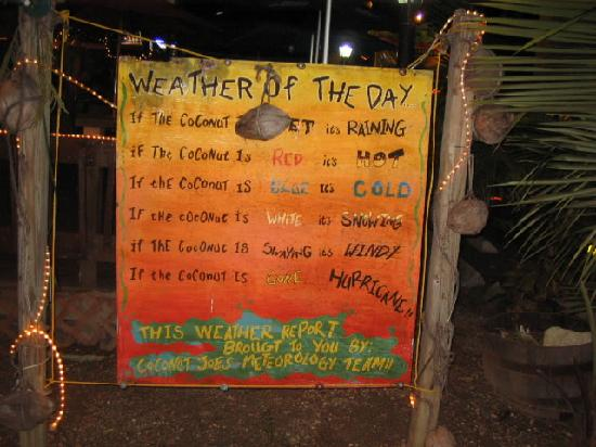 Coconut Joe's Beach Bar & Grill: our daily weather report!